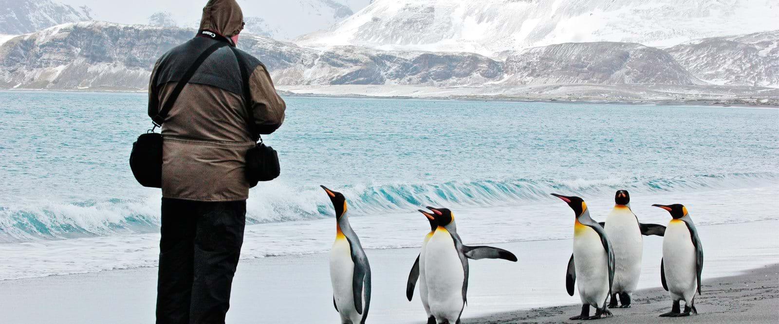 Resor Till Antarktis