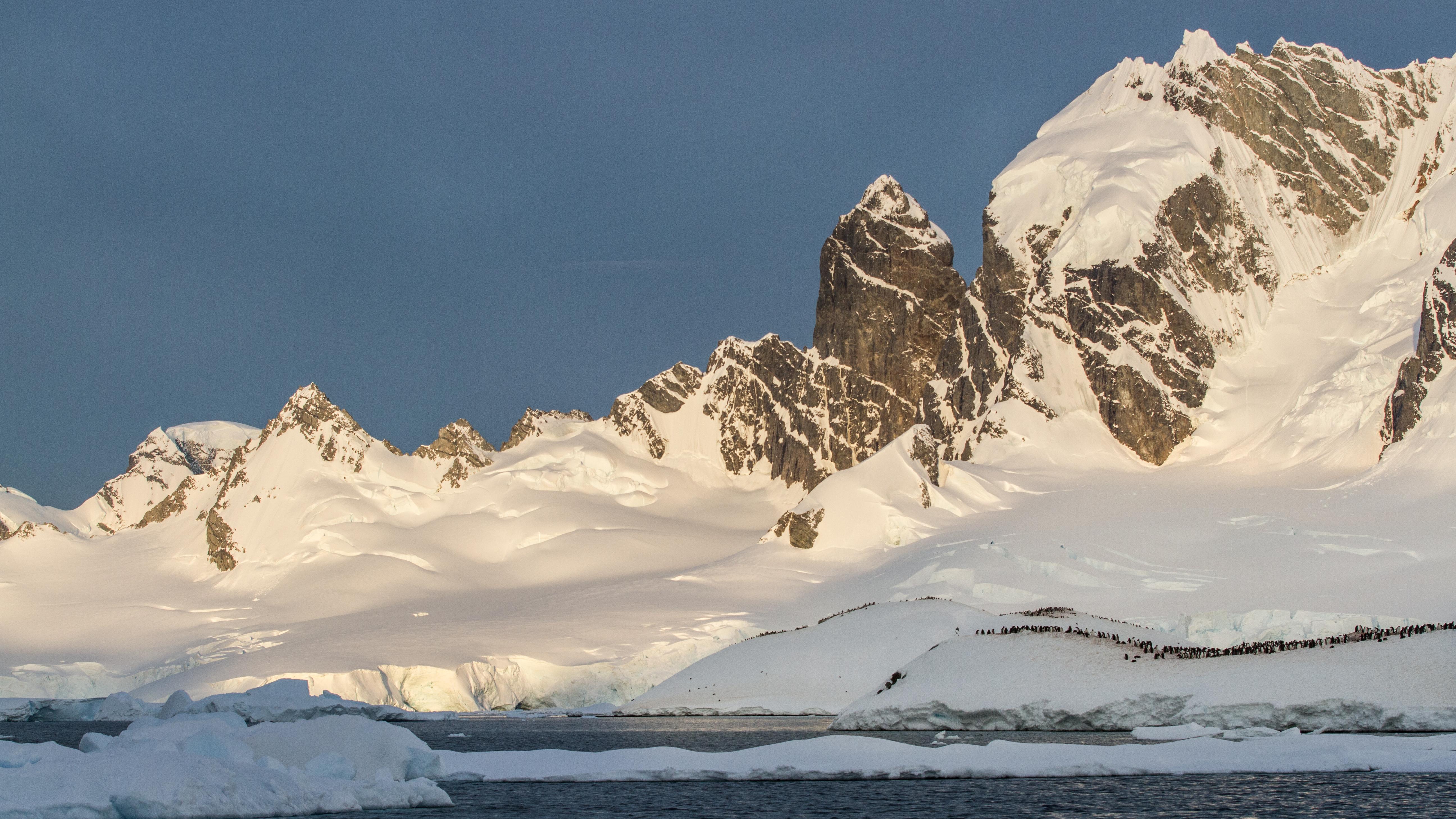Langtan till antarktis renhet